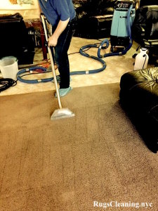 carpet cleaning service in nyc