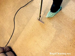 carpet cleaning new york service
