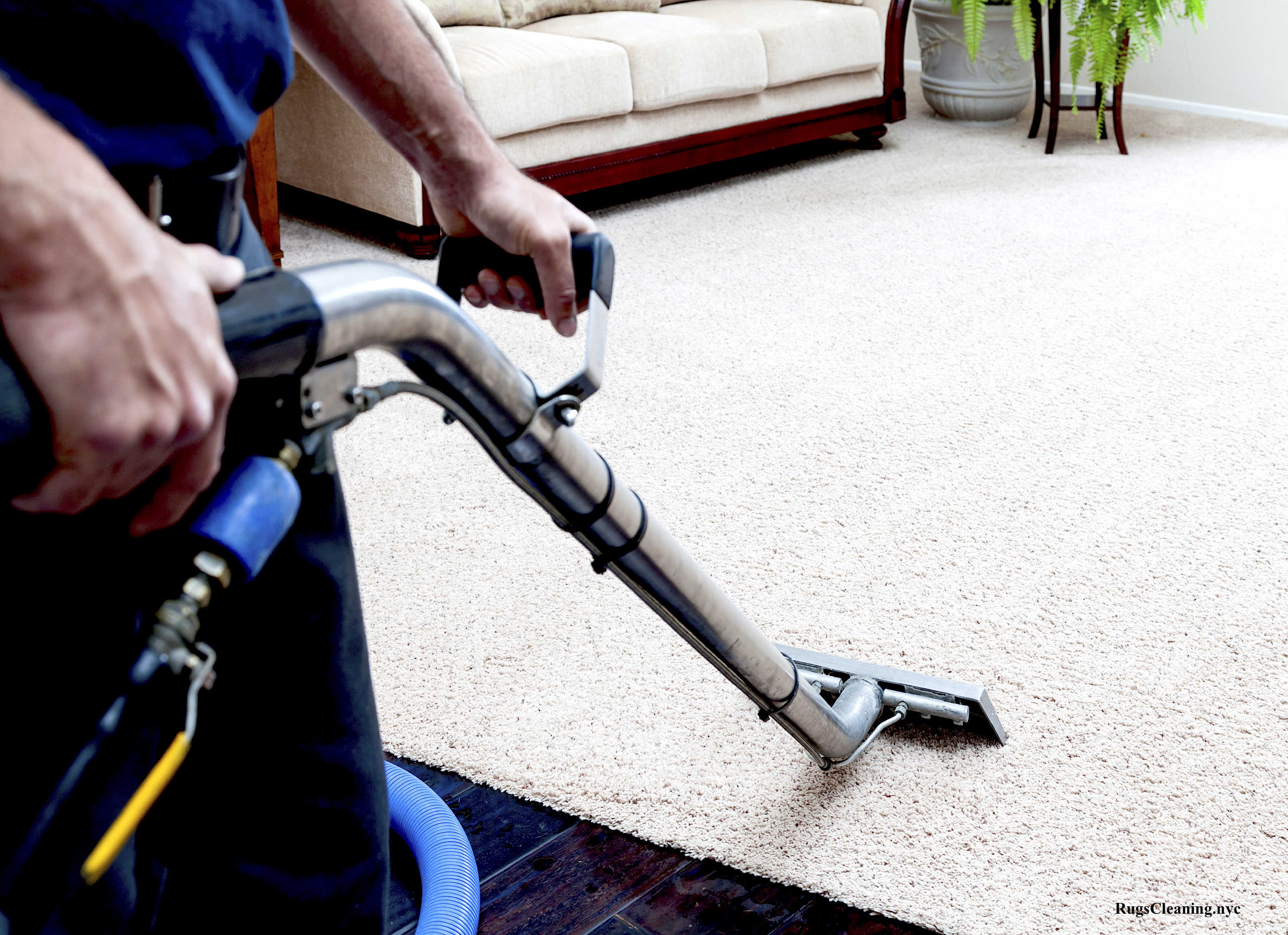 Commercial Carpet Cleaning NYC by RugsCleaning.NYC ®
