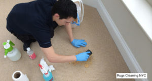 sisal rug cleaning service