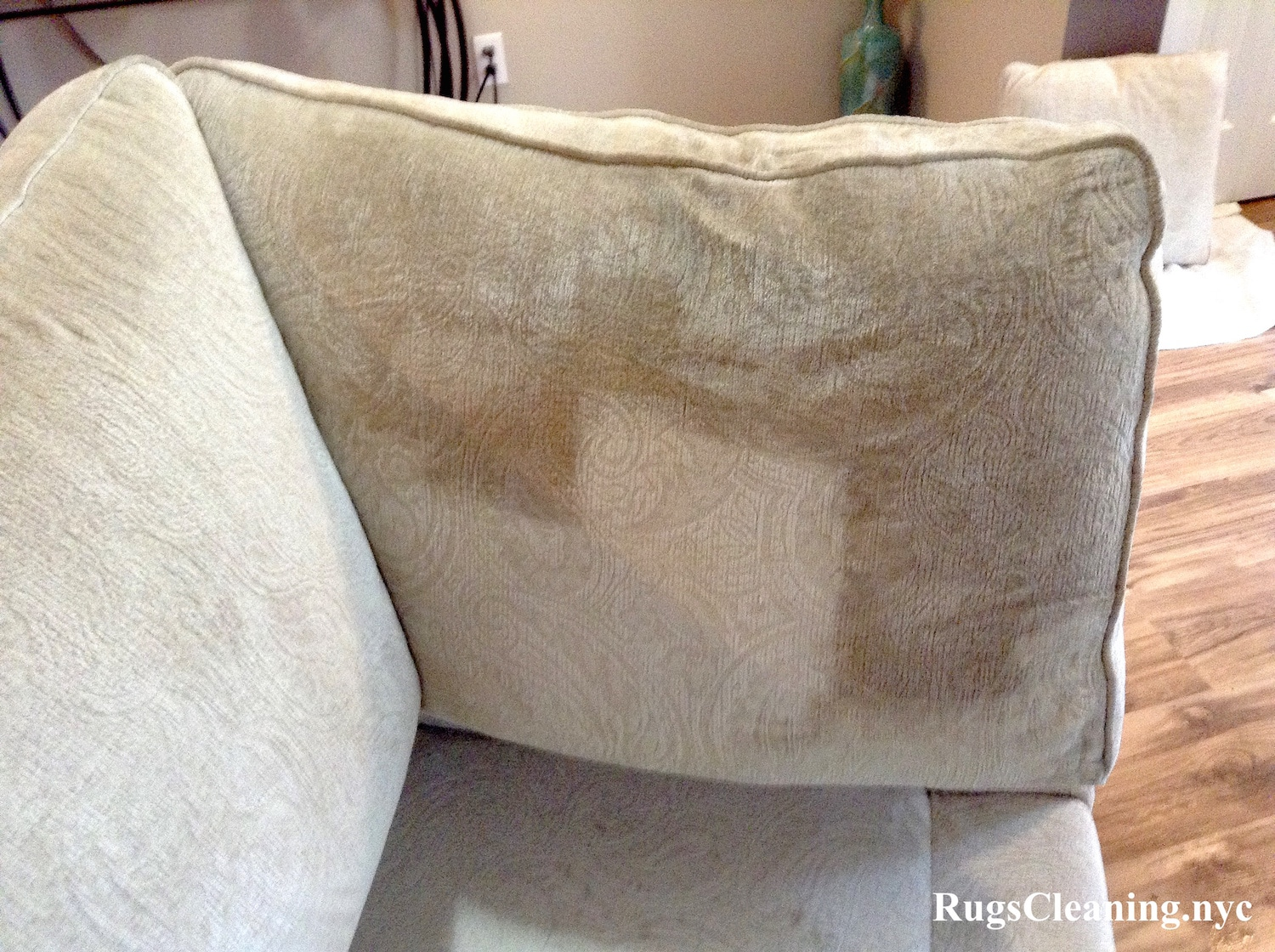Upholstery Cleaning Nyc Service